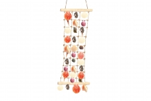 Large Sea Shells Ladder