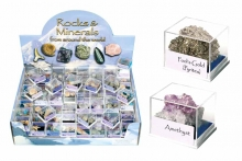 Rocks & Minerals in Case