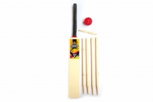 V12 Cricket Set - Size 5