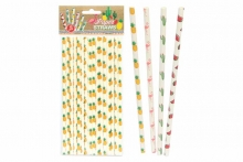 Paper Straws - Assorted Prints (16)